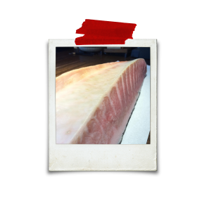 Aged Bluefin Tuna at 10 days