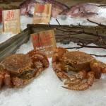 Crabs on ice at Dragonfly Izakaya & Fish Market.